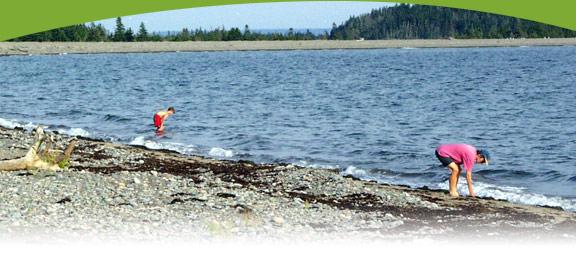 Nova Scotia Beachcombing | Eastern Shore | Osprey Shores