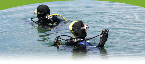 Nova Scotia Diving | Eastern Shore | Osprey Shores